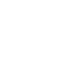 Dravet europe, Dravet Syndrome European Federation